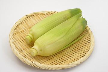 夏野菜 とうもろこし/目にも鮮やかな夏野菜です。