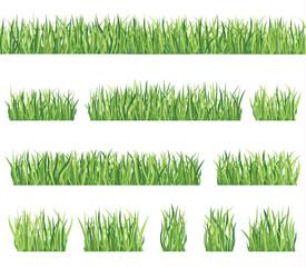 Grass set Floral summer border set