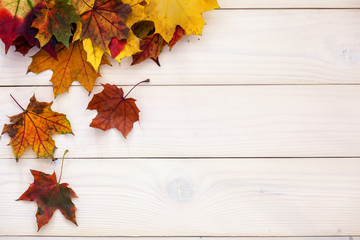 Autumn background with colorful leaves on wooden background