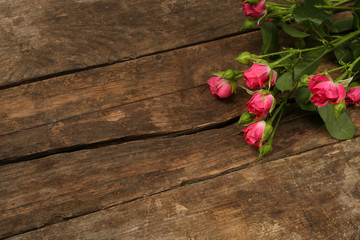 Keuken foto achterwand Roses Beautiful small roses on wooden background