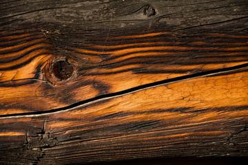 Obraz Fragment sękatej starej deski ze słojami. - fototapety do salonu