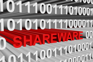Shareware is presented in the form of binary code