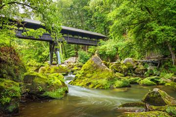 Brücke über die Prüm bei den Irreler Wasserfällen