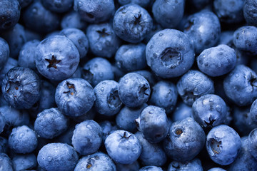 Fresh ripe bilberry background