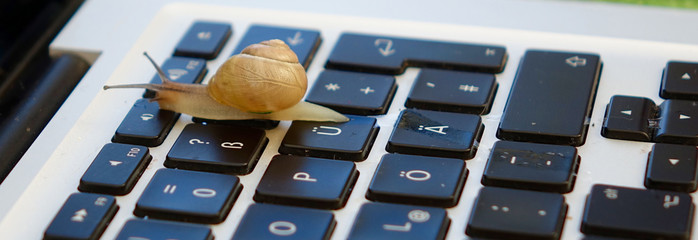 snail on a keyboard