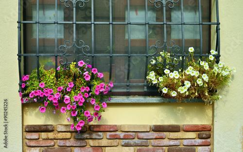 Finestra con inferriata in ferro battuto e fioriere - Fioriere per davanzale finestra ...