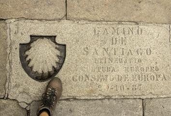 Llegada a Santiago de Compostela