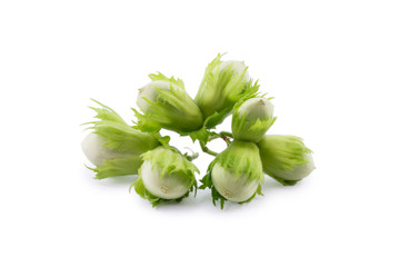 green hazelnuts isolated on a white background