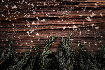 Christmas pine tree with snow on wooden board background with copy space (Vintage color tone)