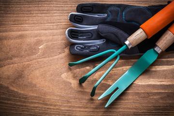 Gardening dandelion trowel hand rake safety gloves on wood board