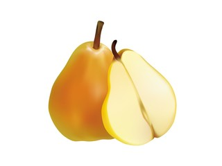 Pear Realistic vector Fruit