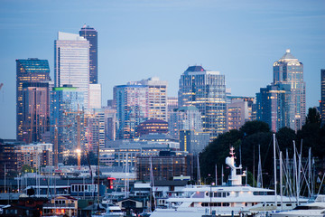 Luxury Yachts Boats Lake Union Seattle Downtown City Skyline