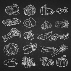 Vector set of different hand drawn decorative vegetable .