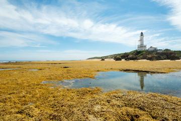 Point Lonsdale LIghthouse, Victoria, Australia.