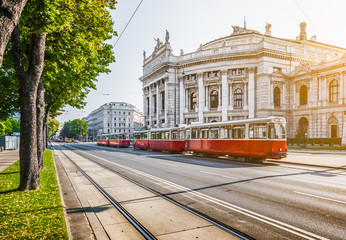 Poster Vienna Wiener Ringstrasse with Burgtheater and tram at sunrise, Vienna, Austria