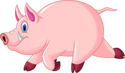 funny pig cartoon run