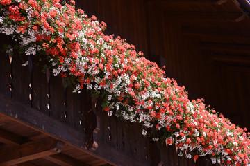 Cerca immagini casa con fiori for Gerani tirolesi