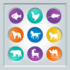 Abstract creative concept vector set of animals icons for web