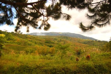 Hill in Bukidnon Philippines photo image