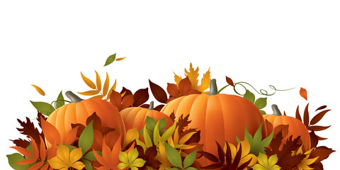 Thanksgiving background. Pumpkins and autumn leaves.