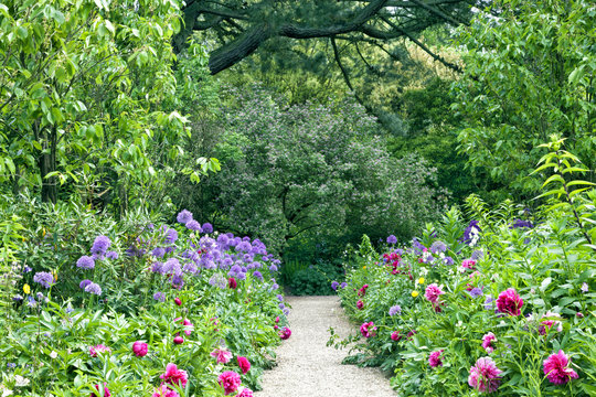 Stone garden path in the middle of summer cottage flowers, shrubs, trees