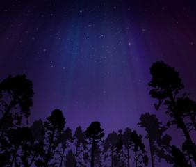 Night sky with northern lights