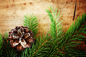 Fir cones and branches, Christmas and New Year's background, sel