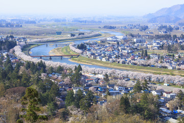 Hinokinaigawa River's Bank of Cherry Trees, Kakunodate, Akita