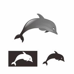dolphin bw