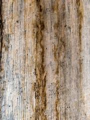 Alte Bretterwand, Hintergrund