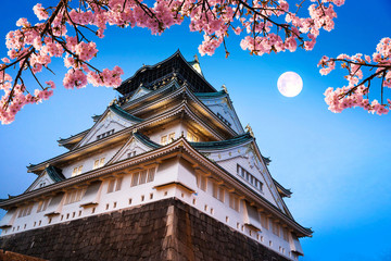 Japan. Beautiful night view of Osaka castle with cherry blossom and moon. Oriental beauty scene.