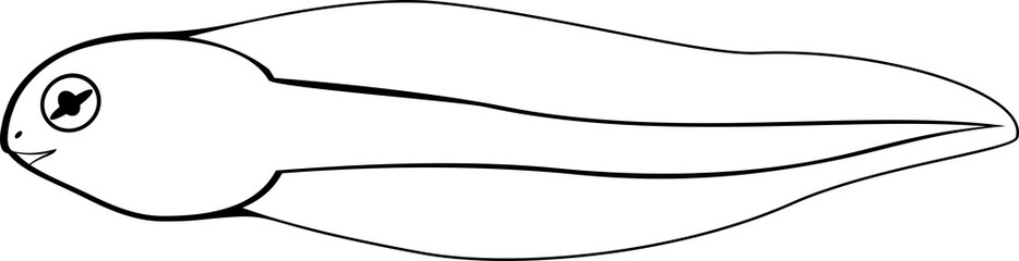 tadpole coloring pages - photo #45