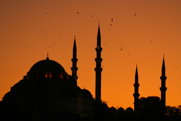 Istanbul's silhouettes
