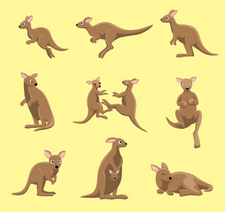 Kangaroo Poses Cartoon Vector Illustration