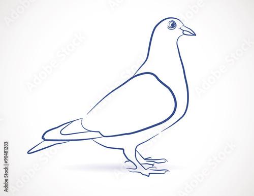Dessin Croquis De Pigeon Fichier Vectoriel Libre De Droits Sur La