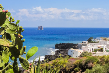 Coastline of Stromboli with prickly pear and white houses; Strombolicchio stack in the background