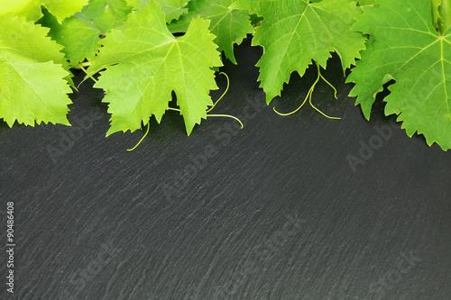 feuilles de vignes sur fond d 39 ardoise photo libre de droits sur la banque d 39 images. Black Bedroom Furniture Sets. Home Design Ideas