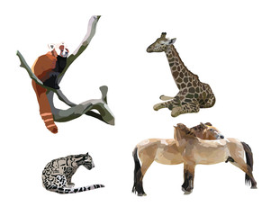 feline, giraffe, Przewalski horse, panda small on a white background
