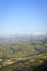 Langhe, Barolo vineyards summer panorama. Color image