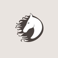 Vector logo horse. template for your business. Pegasus creative