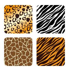 Animal prints design.