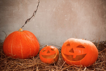 Halloween pumpkin on background old wall