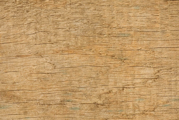 Wooden texture close-up background