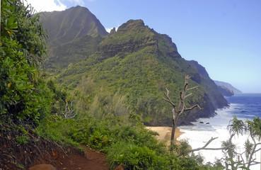 Rugged coastline of Ocean and rainforest along Kalalau Trail, Kauai, Hawaii