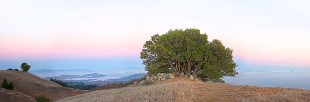 Sunset view from the top of Mt Tam in Marin County, California