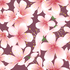 Seamless background of cherry blossom. Vector flowers pattern.