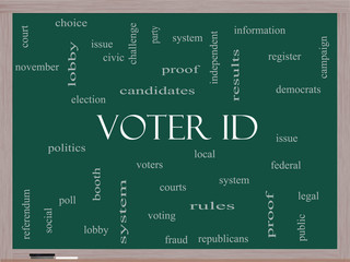 Voter ID Word Cloud Concept on a Blackboard