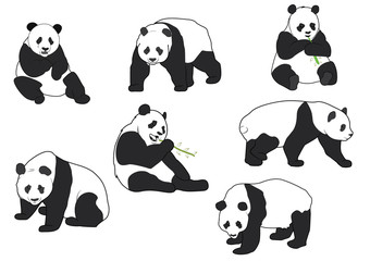 Set of Vector Panda silhouettes