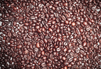 coffee bean background idea  concept