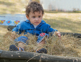 a boy sits on a cart in the village